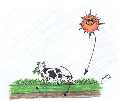 Livestock system cartoon