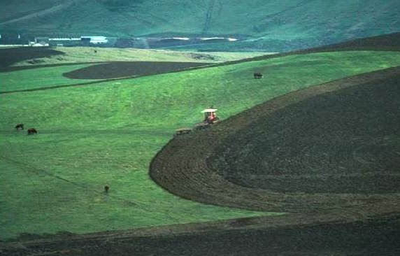 Image: Plowing
