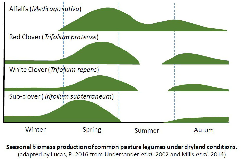 Seasonal production profiles of common legumes
