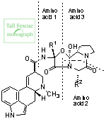 Structures and amino acids in the common ergopeptine alkaloids of the tall fescue/N. coenophialum symbiotum.
